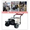 高压洗车机/小型高压清洗机/120bar高压水枪