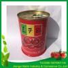工厂直销2016番茄酱罐头400g*24tins