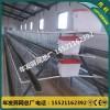 蛋鸡笼阶梯式三层蛋鸡笼自动化养殖设备出口蛋鸡笼子价格