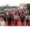 2017上海国际车展(两年一届)