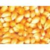 襄阳傲农现代农业求购玉米高粱油糠棉粕麸皮次粉等饲料原料
