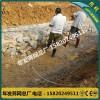 广州厂家专业生产锌铝合金格宾石笼网清远水系东城项目雷诺护垫
