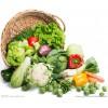 武汉区域首屈一指的武汉送菜公司——武汉送菜公司