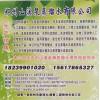 郑州超纯水2017批发市场18239901020