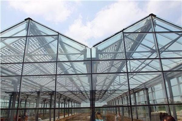 温室大棚建设,连栋温室大棚建设,拱棚蔬菜大棚建设,高温蔬菜大棚建设