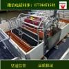 母猪产床欧式产床猪用设备利祥农牧养猪设备厂