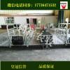 养猪用设备母猪产床猪用分娩床母猪定位栏生产厂家