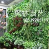 壁挂仿真绿植植物墙背景墙面室内客厅阳台假花草坪绿色装饰