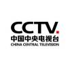 cctv广告价位