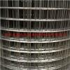 电焊网镀锌不锈钢304焊接网花木围栏电焊网