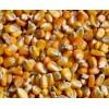 四川饲料厂现款求购玉米小麦高粱棉粕大米木薯淀粉