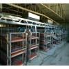 全自动鸡笼设备批发采购新乡养殖设备厂家滑县耀阳养殖设备商