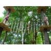 历奇探险-丛林飞越-TreeTop-树上探险乐园