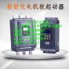 320KW中文旁路软起动器
