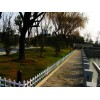 甘肃绿化带草坪护栏厂家,甘肃pvc绿化护栏厂家