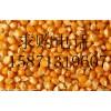 旺川求购:玉米、大豆、碎米、棉粕