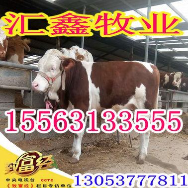QQ图片20170406213435