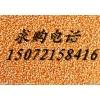 旺川求购:玉米、高粱、棉粕、肉骨粉