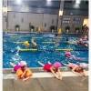 游泳高端宁波游泳领导品牌