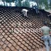 塑料蜂巢土工格室护坡绿化土工格室