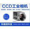 高清CCD工业相机批发