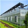 蔬菜大棚哪家便宜-口碑好的江苏蔬菜大棚公司