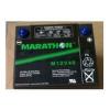 山东青岛一级代理美国GNB蓄电池M12V40现货特价